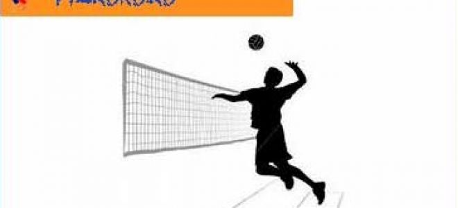 Рабочая программа по волейболу 2017-2018 учебный год